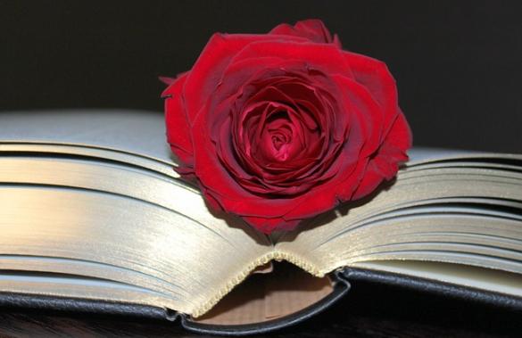 Biblioterapia w szkole – III stopień